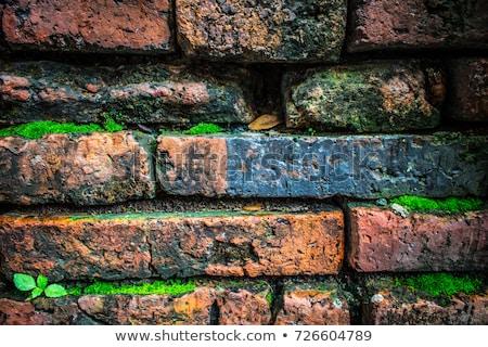 汚い · ぬれた · レンガの壁 · 背景 · 都市 - ストックフォト © yanukit