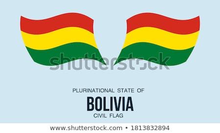 карта флаг кнопки Боливия вектора изображение Сток-фото © Istanbul2009