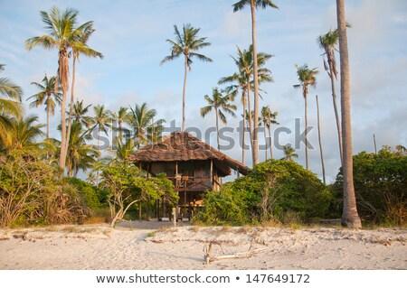 eski · plaj · kulübe · ahşap · ayarlamak · kum · plaj - stok fotoğraf © mikko