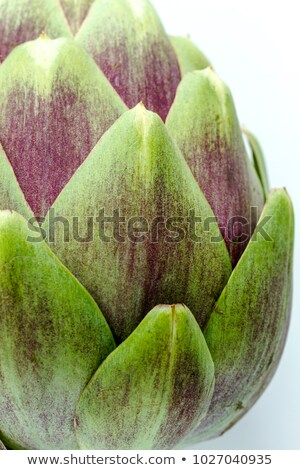 Close up of fresh artichokes Stock photo © stockyimages