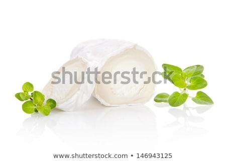Geitenkaas kruiden witte kaas melk peper Stockfoto © cynoclub
