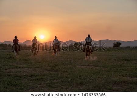 man and horse at sunset stock photo © adrenalina