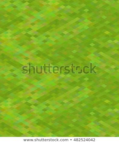 Pixeles zöld fű izometrikus kilátás végtelen minta fényes Stock fotó © Evgeny89