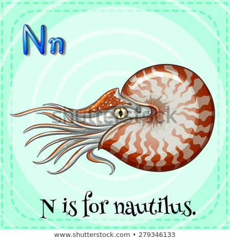 Flashcard alphabet N is for nautilus Stock photo © bluering