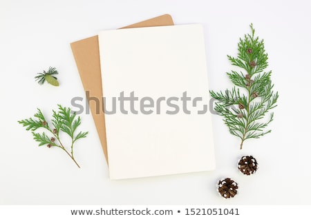 christmas greeting card with blank space stock photo © marimorena