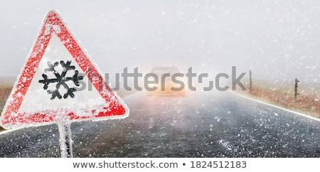 雪 霧 田舎道 風景 氷 時間 ストックフォト © Kidza