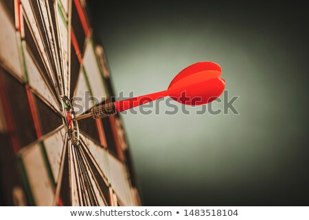 Target hit in center by arrows, side view Stock photo © cherezoff