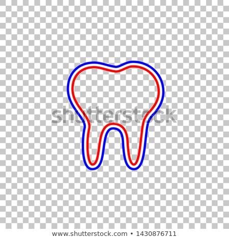 синий прозрачный зубов красный корней иллюстрация Сток-фото © Tefi