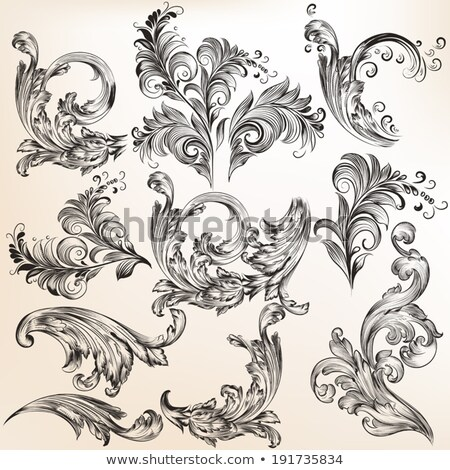 Calligraphic elements for design and page decoration - vector set Stock photo © blue-pen