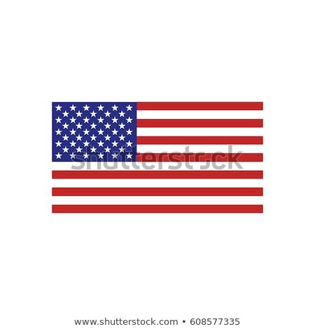 Bandera vector América forma ola primer plano Foto stock © -Baks-