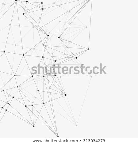 Abstract Low Poly Hexagons White Design Background Stock photo © limbi007