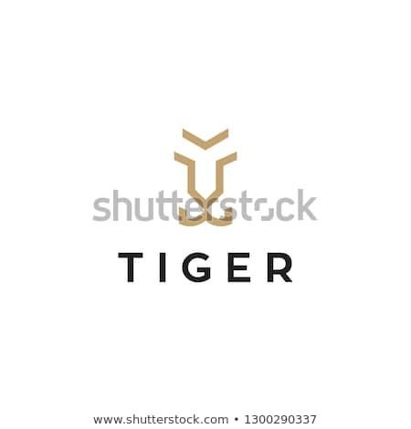 Tiger Head Logo Template Design Element For Label Sign Brand