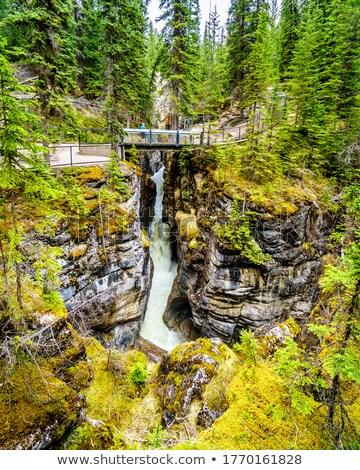 狭い 橋 カナダ 冬 ストックフォト © pictureguy