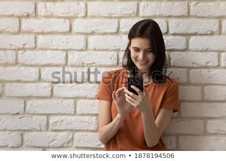 Web sitesi nişan beyaz tuğla duvar karalama simgeler Stok fotoğraf © tashatuvango