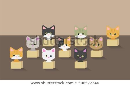 ikon · barátság · házi · háziállatok · űrlap · macska - stock fotó © maryvalery