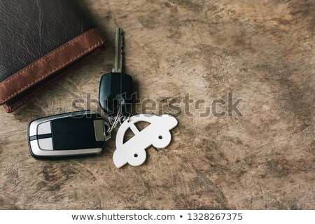 Wooden Car In A Bag Stock photo © monkey_business