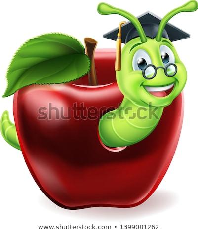 зеленый Caterpillar красное яблоко еды фон жира Сток-фото © digitalr