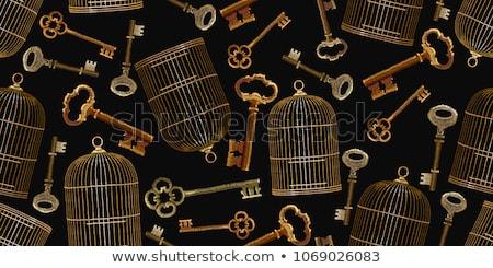 Vector gouden kooi geïsoleerd witte Stockfoto © kostins