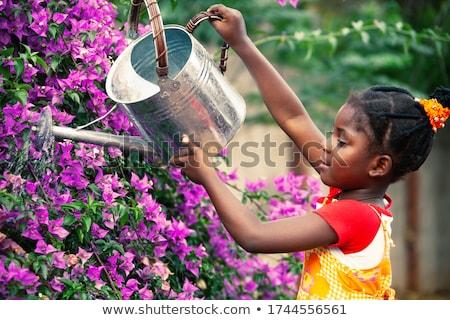 Afrikai lány locsol növény locsolókanna visel Stock fotó © RAStudio