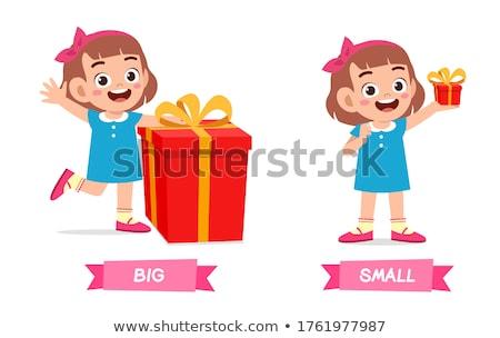 Tegenover woorden groot klein illustratie voedsel Stockfoto © bluering