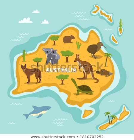 Australia map flora and fauna. Animals and plants on mainland. V Stock photo © popaukropa