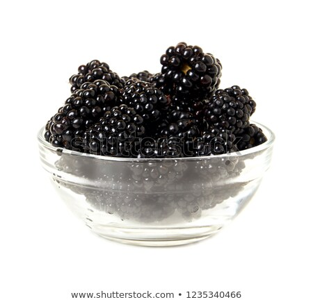 Rijp BlackBerry geïsoleerd witte blad Stockfoto © ungpaoman