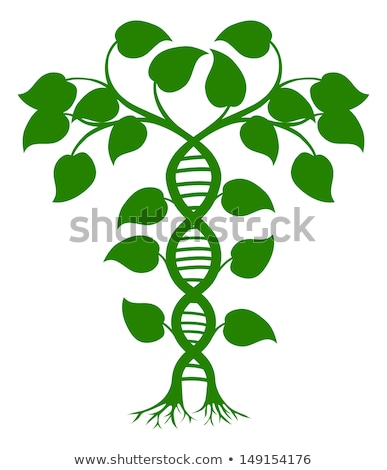 Plantes loupe regarder énorme ADN Photo stock © RAStudio
