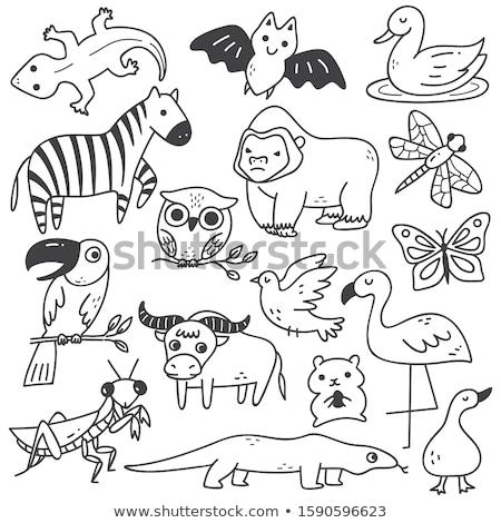 Сток-фото: животного · болван · дракон · иллюстрация · фон