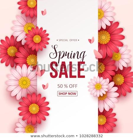 tavasz · vásár · promo · címke · 30 · százalék - stock fotó © robuart
