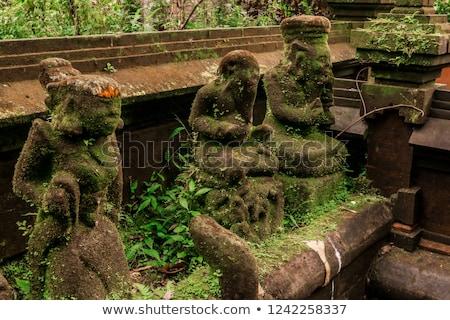 Stone balinese mossy statue Bali island Indonesia Stock photo © galitskaya