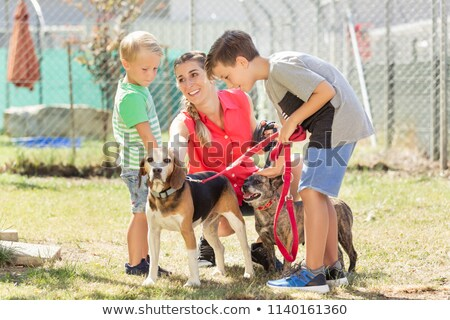 Mom with her sons walking dogs of an animal shelter Stock photo © Kzenon