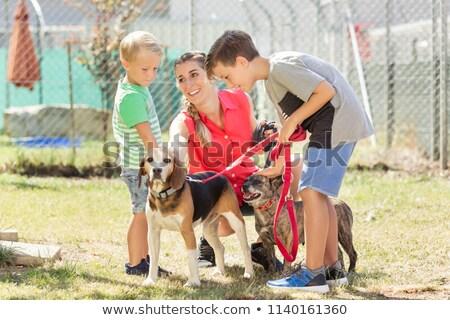 мамы · ходьбе · собаки · животного · приют · женщину - Сток-фото © kzenon