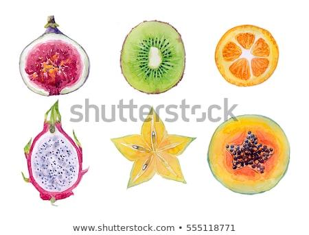 Dragão fruto kiwi branco aquarela ilustração Foto stock © ConceptCafe