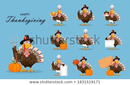 Szakács kék madár rajzfilmfigura izolált fehér Stock fotó © hittoon