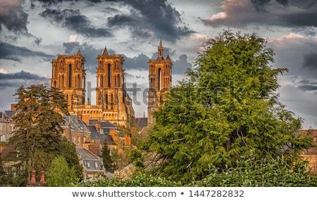 Kathedraal Frankrijk een belangrijk gothic architectuur Stockfoto © borisb17