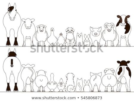 cartoon farm animals collection color book stock photo © izakowski