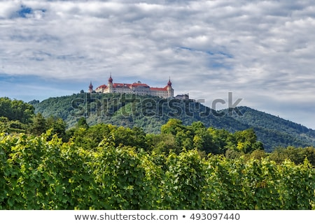 view from gottweig abbey hill austria stock photo © borisb17