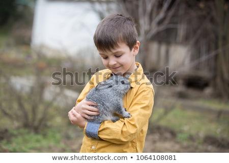 мальчика · играет · кролик · зоопарке · устойчивость - Сток-фото © galitskaya