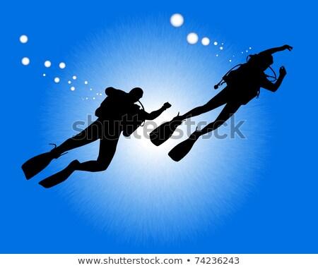 kettő · teknősök · úszik · tenger · illusztráció · víz - stock fotó © mayboro