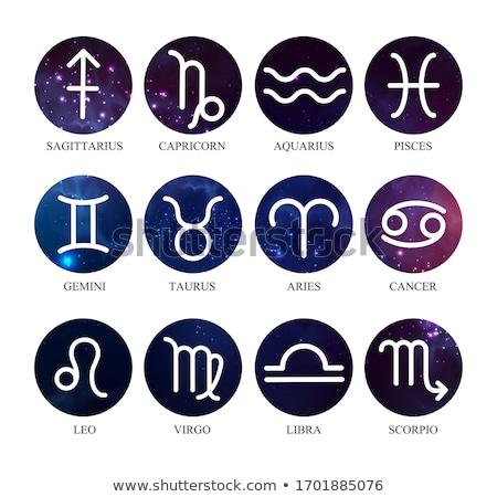 Horoscope astrologie zodiac signe symbole eau Photo stock © robuart