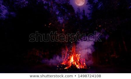 Vreugdevuur bos groot brand vlam achtergrond Stockfoto © vapi
