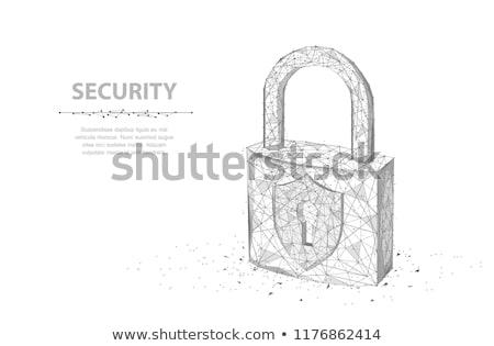 safety internet on white background. Isolated 3D illustration Stock photo © ISerg