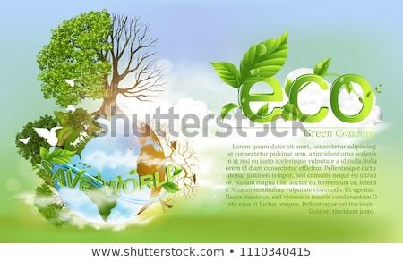 Yeşil eco poster orman geri dönüşüm kâğıt Stok fotoğraf © TheModernCanvas