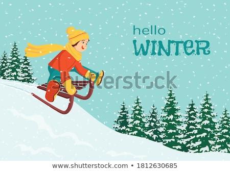 garçon · ensoleillée · hiver · jour · nature · enfant - photo stock © Traven