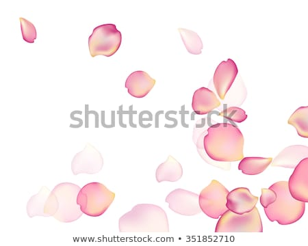 girl in falling petals Stock photo © zastavkin