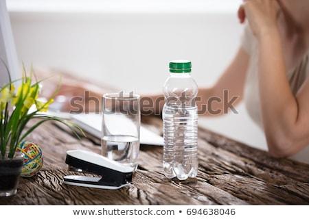 Zdjęcia stock: Kobieta · interesu · pitnej · butelki · wody · piękna · garnitur
