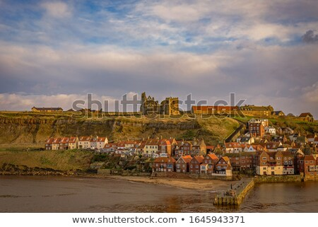 Ruined house in hillside in England Stock photo © backyardproductions