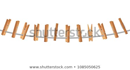 Clothes pegs on the clothesline Stock photo © dinozzaver