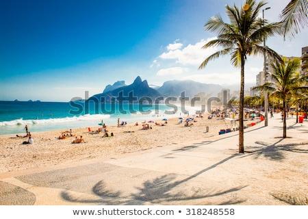 praia · casas · Rio · de · Janeiro · Brasil · natureza · oceano - foto stock © compuinfoto
