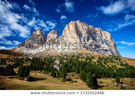 Nyár kilátás völgy fű otthon hegy Stock fotó © Antonio-S